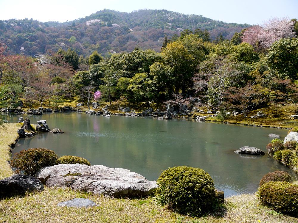 天龍寺の庭園の写真素材
