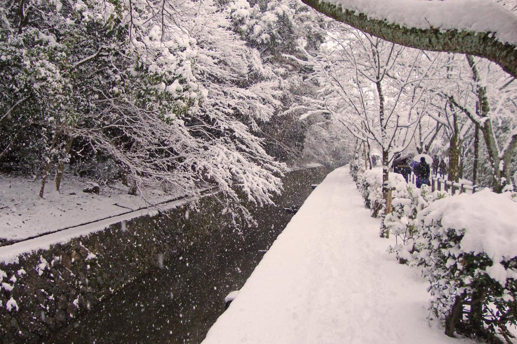哲学の道・雪