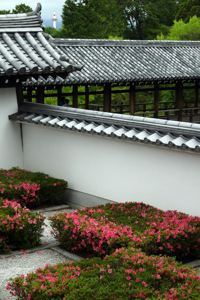 東福寺から見る京都タワーの写真素材