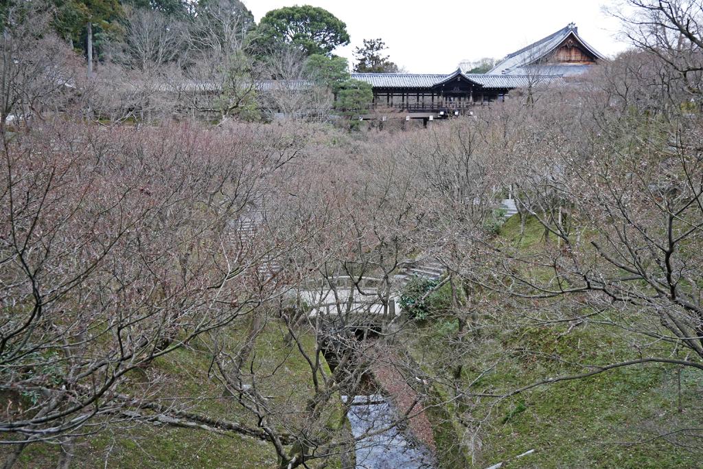 東福寺の写真素材