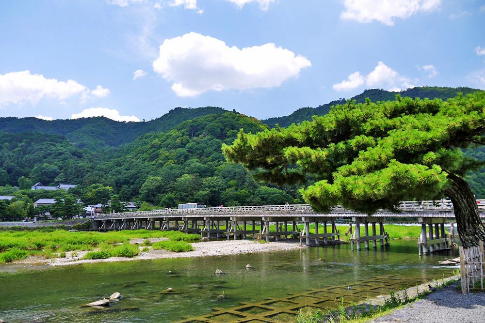 京都 嵐山 渡月橋の夏の写真素材