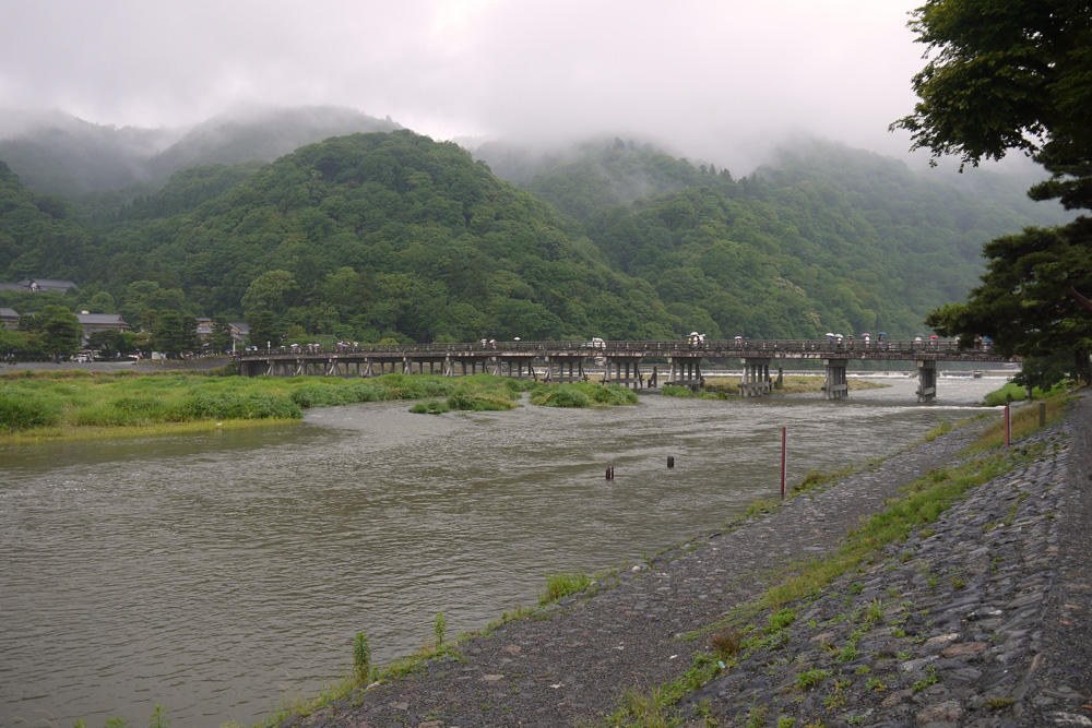 雨の渡月橋の写真素材