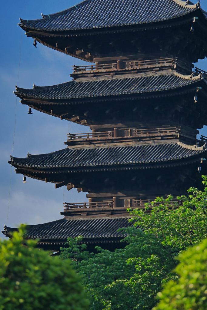 朝の東寺の五重塔の写真素材