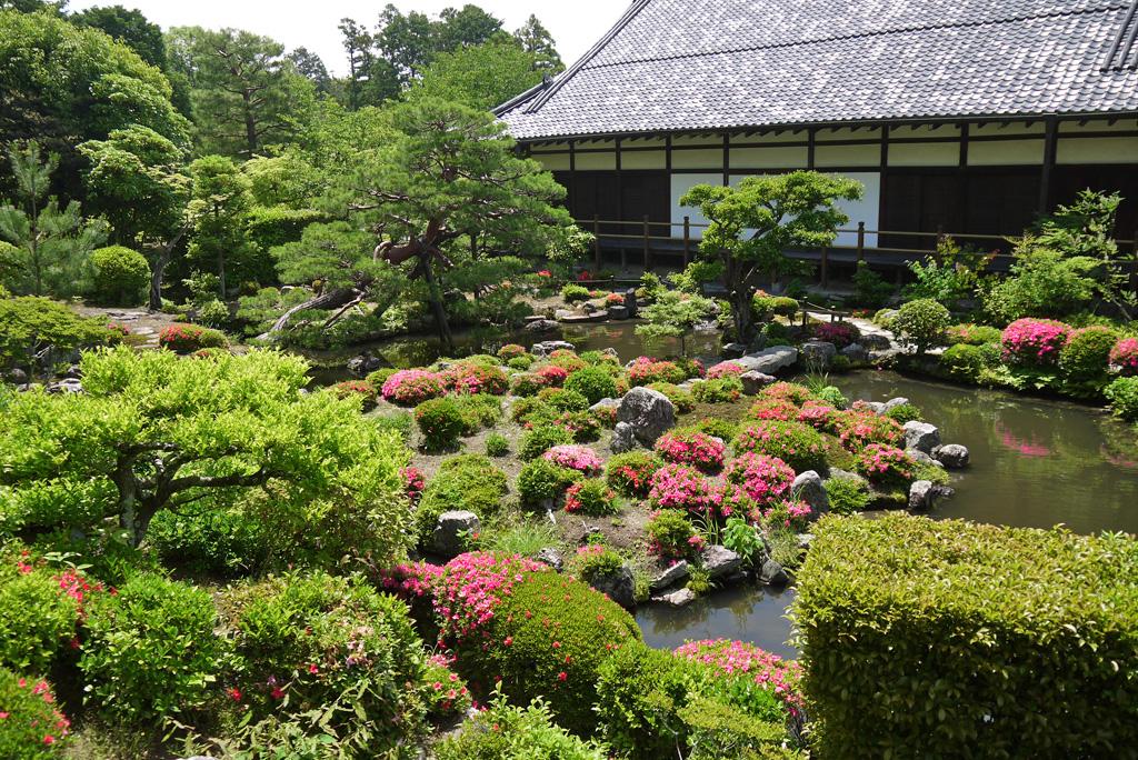 等持院のサツキ庭園