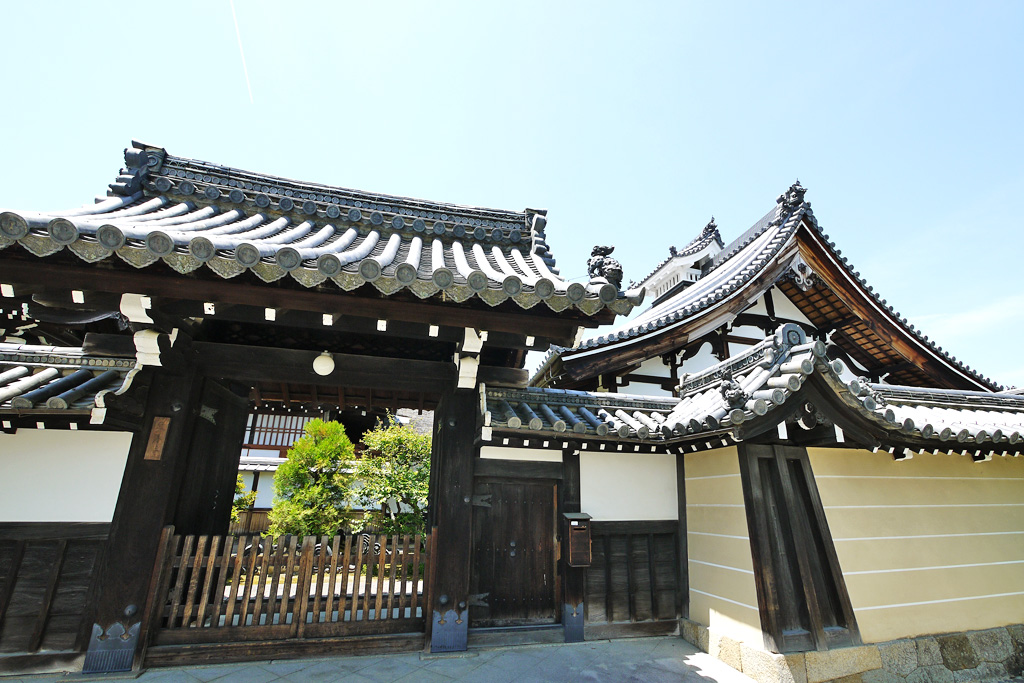 妙心寺 東海庵の写真素材