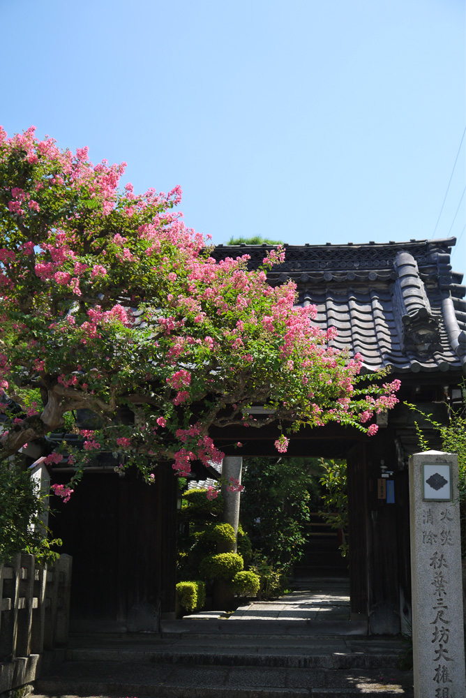 東景寺の写真素材