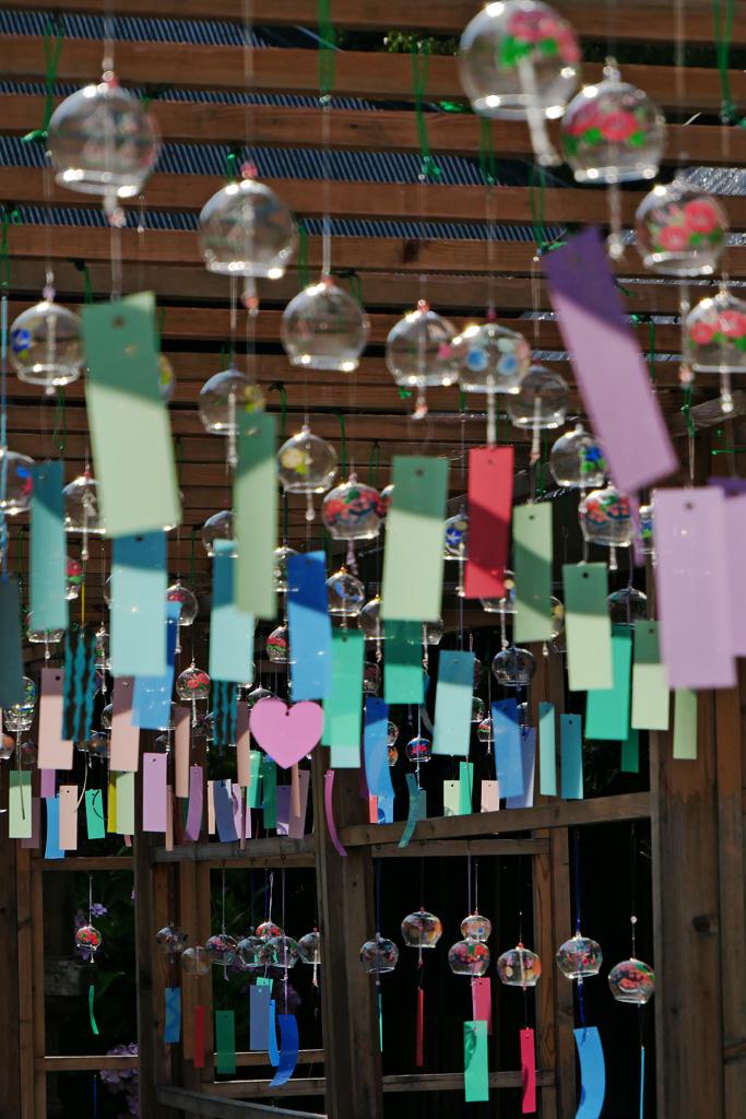 東光院の風鈴祭りの写真素材