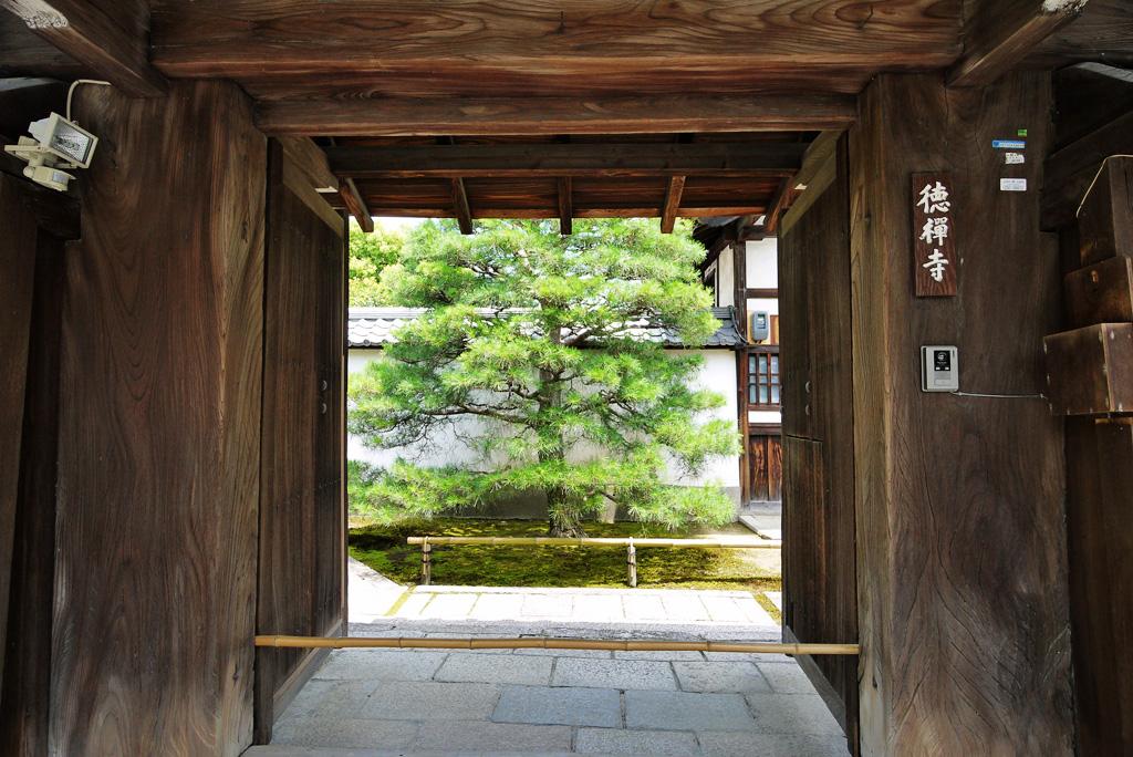 大徳寺 徳禅寺の写真素材