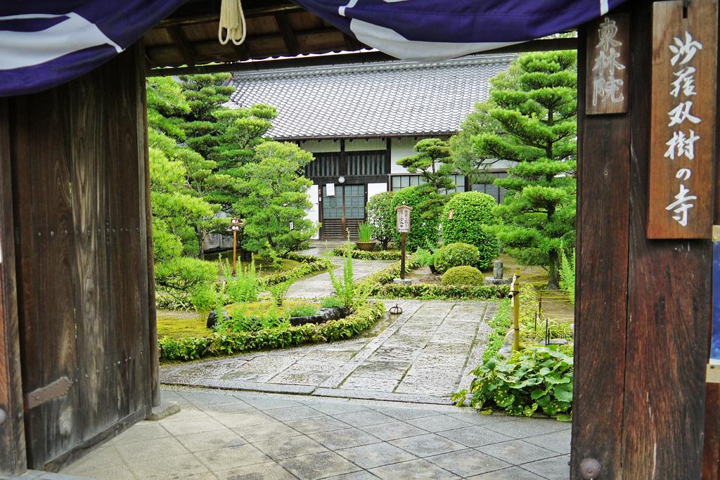 妙心寺東林院の写真素材