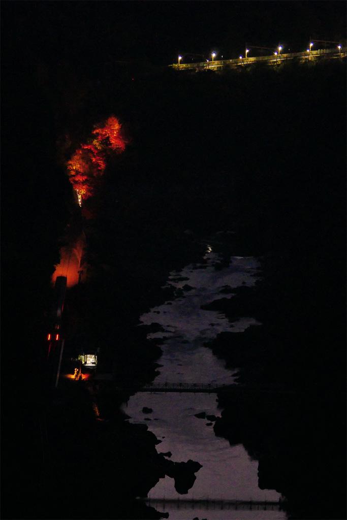嵯峨野トロッコ列車 紅葉ライトアップの写真素材