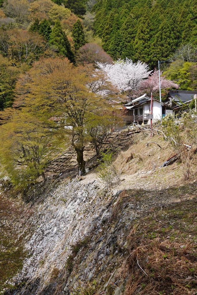 月輪寺の写真素材