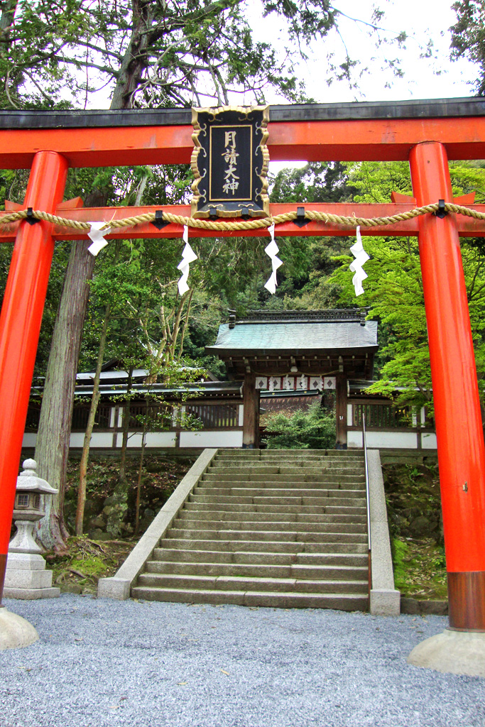 月読神社の写真素材