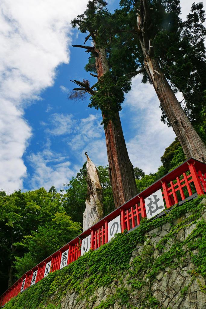 保津川 請田神社の写真素材