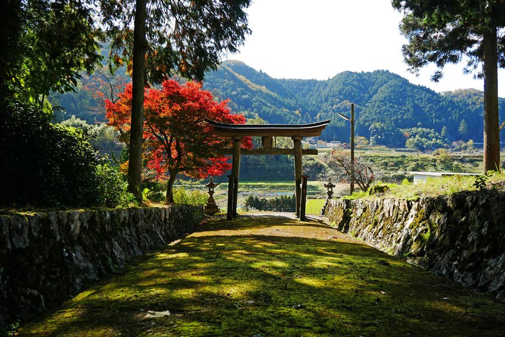 宇麻谷神社の写真素材