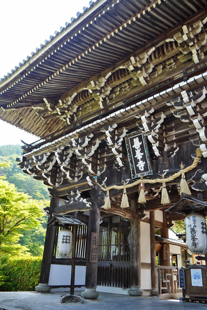 善峯寺の山門の写真素材