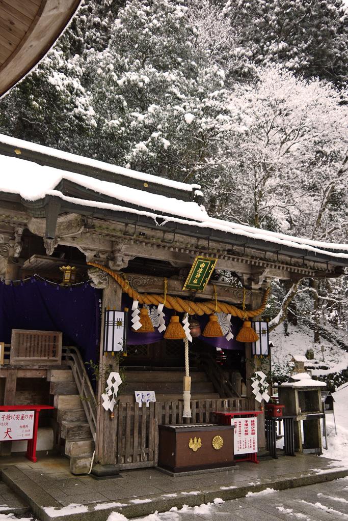 由岐神社 鞍馬寺の写真素材