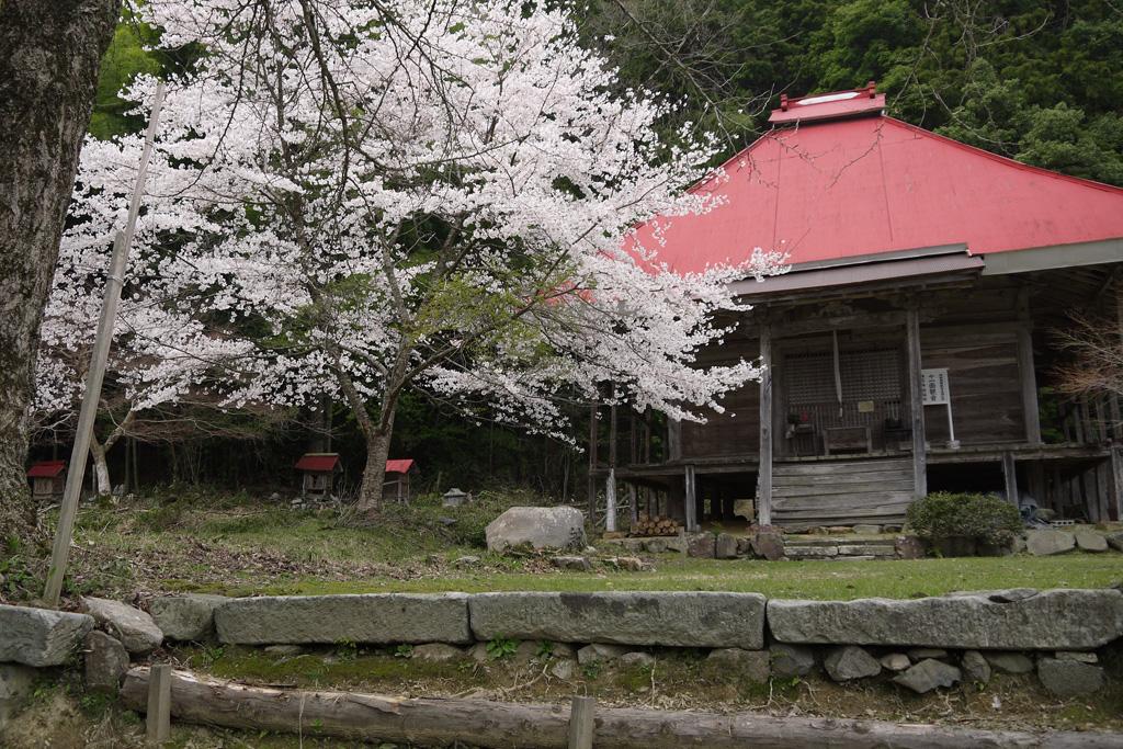善福寺の写真素材