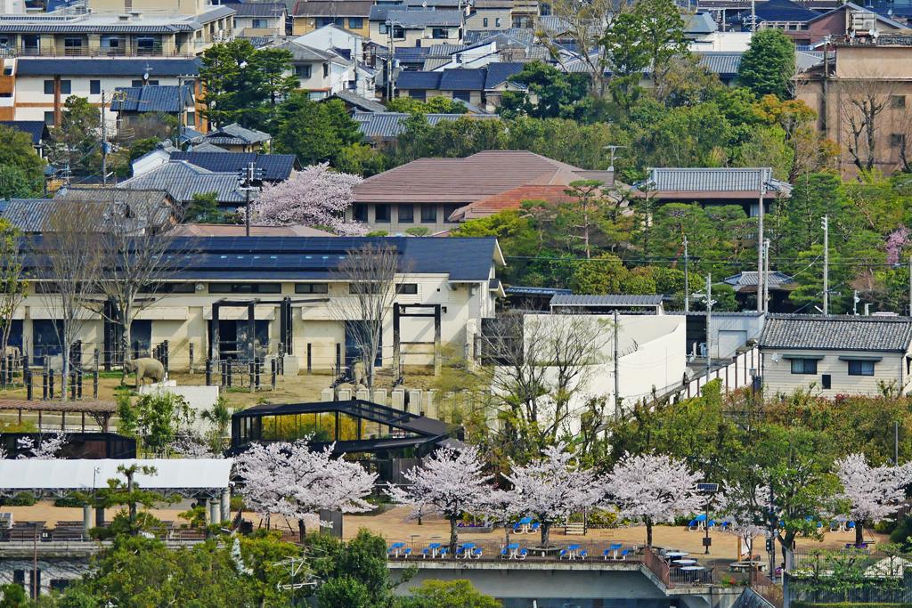 京都市動物園の写真素材