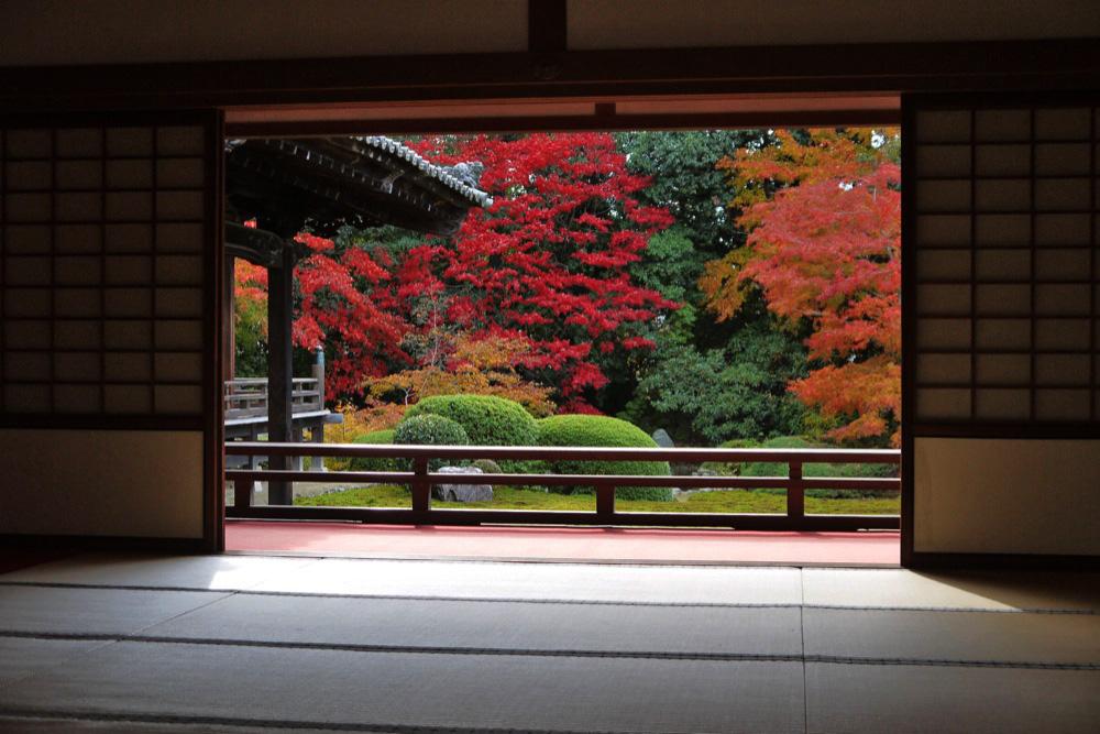 隨心院の紅葉の写真素材